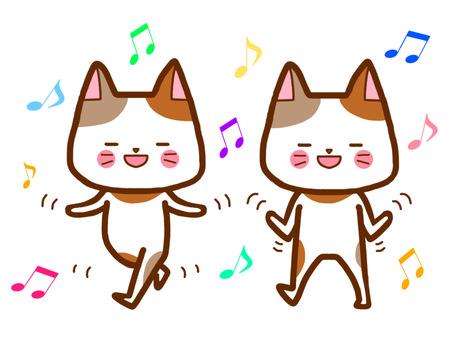 Good gymnastics dance cat