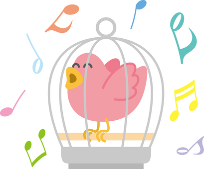 Birdcage little bird pet note