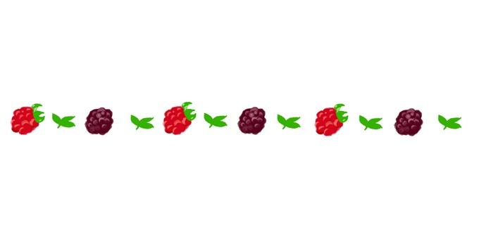 Delimiter (raspberry 2)