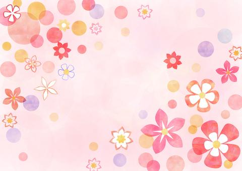 Flower _ pastel _ pink background