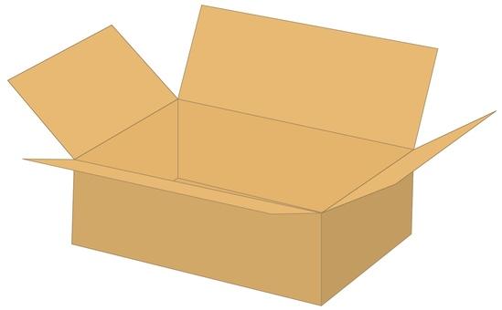 Cardboard box B1