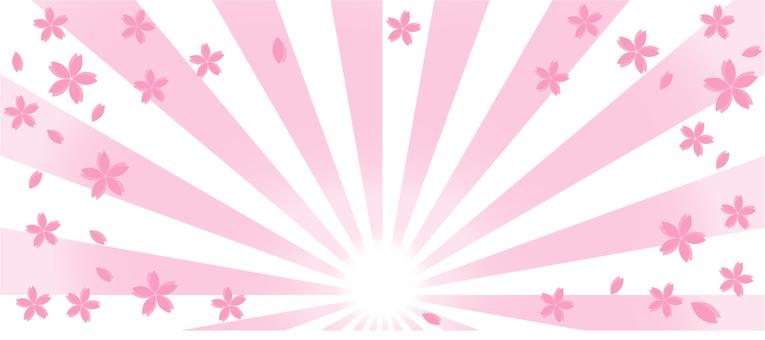 為櫻花橫幅