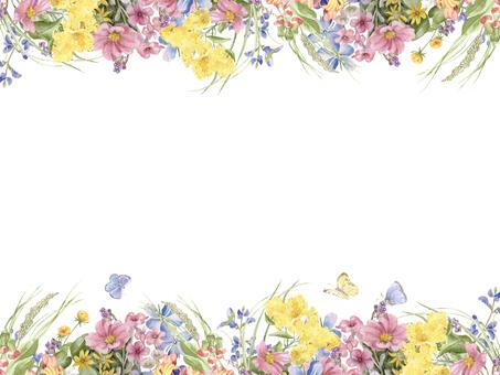 Flower frame 236 - Flower frame of field in the late summer
