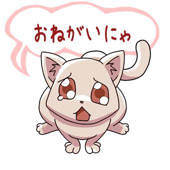 Please Nyanko (Please)
