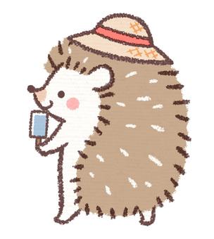 Hedgehog straw hat