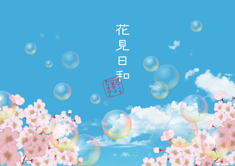 Spring cherry blossoms and blue sky and soap bubbles