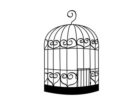 Fashionable bird cage