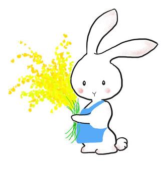 꽃 토끼 3