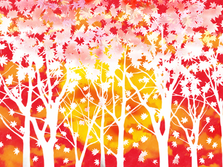 Autumn leaves Sunset 3