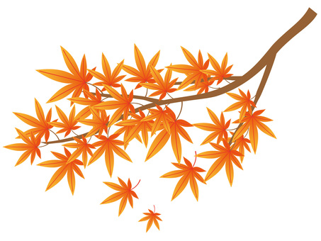 Autumn leaves branch