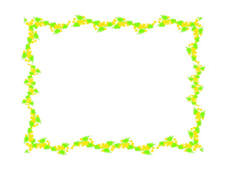 Mimosa decorative frame