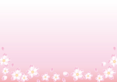 Cherry blossoms frame · pink