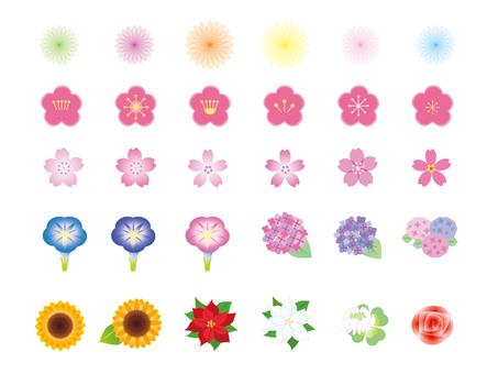 여러가지 꽃 1