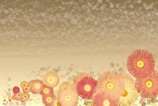 Small daisy background 3