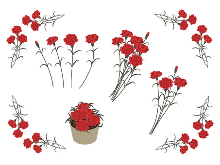 Set of carnations