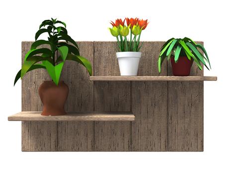 식물이있는 고목 선반 (차)