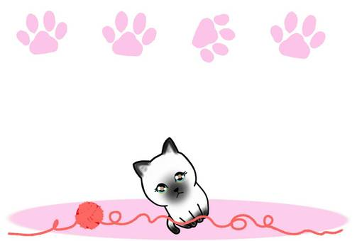 Frame cat background meat ball