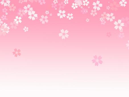 桜背景ver22