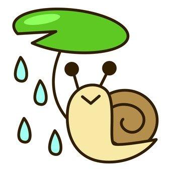 Rainy season - Snail