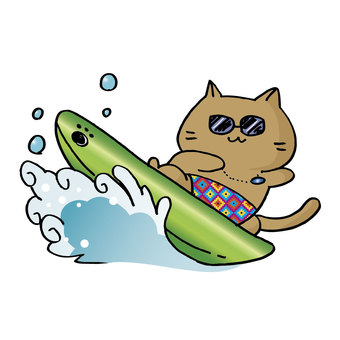 Surfing cat ①