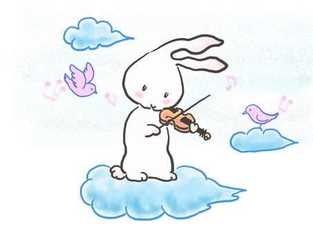 바이올린 토끼 54