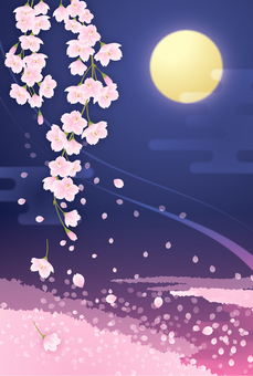 Weeping cherry blossoms and moonlight postcards