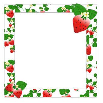 Strawberry frame 1