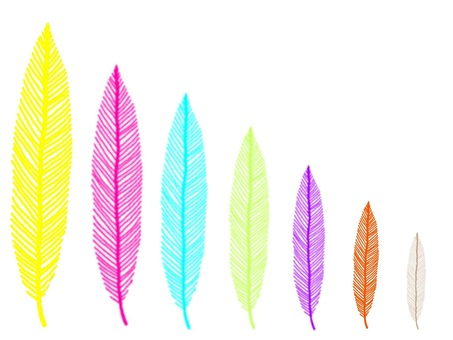 Feather series ☆
