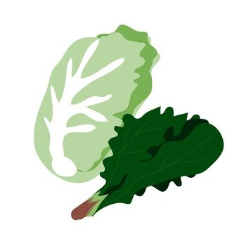 Chinese cabbage and spinach