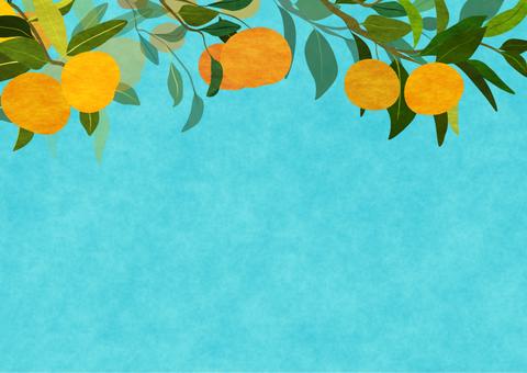 Tangerine tree background