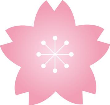 벚꽃의 꽃잎 (사쿠라 꽃) 봄 장식