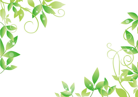 Fresh green _ frame