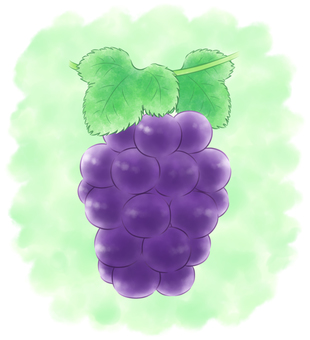 Round-grained grape black system with background