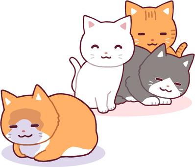 주위에 친숙해 질 수없는 고양이