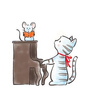 Piano cat 31