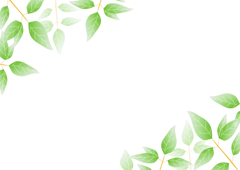 Green frame 2