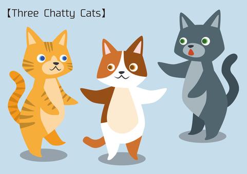 Three Chatty Cat