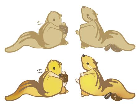 Squirrel 06