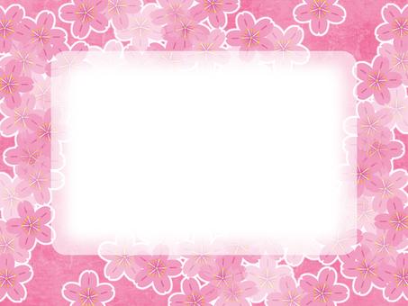 배경 - 벚꽃 62