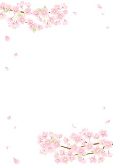 벚꽃 배경 04