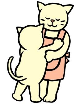 Cat cat color