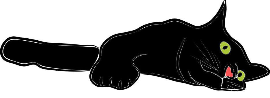Boring black cat