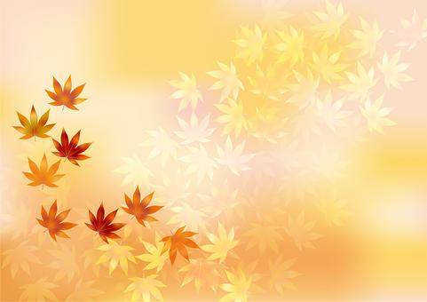 Autumn leaves 271