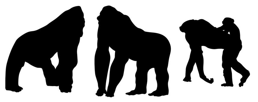 Silhouette - gorilla · chimpanzee set