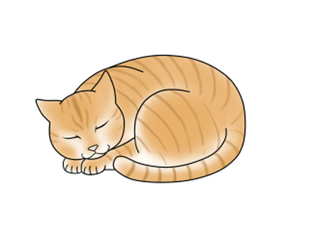 Sleeping cat, tea tiger