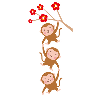 Monkeys on plum trees