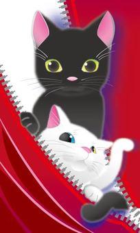 Kitten - Real