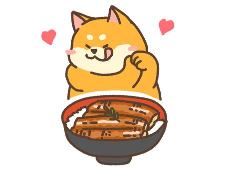 Unagi rice bowl