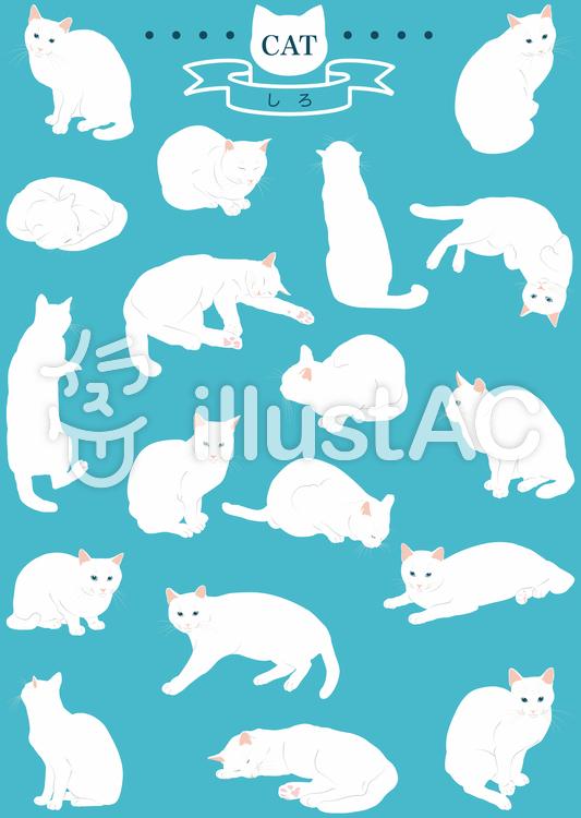 猫(リアル・しろ)18ポーズのイラスト