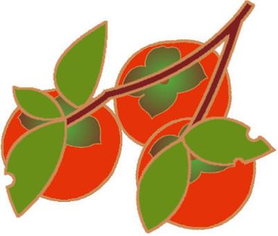 Persimmon - branch 2